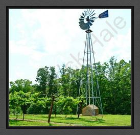 Amber Falls Windmill E C R BC DSC_1294