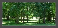 Park-like Setting E C R BC Web DSC06282