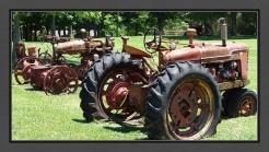 Tractors by Tree E C R BC Web DSC06244